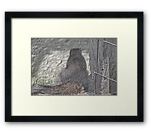 Sitting and Thinking Framed Print