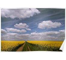 Flowers and Clouds Poster