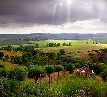 Alentejo Countryside by ccaetano