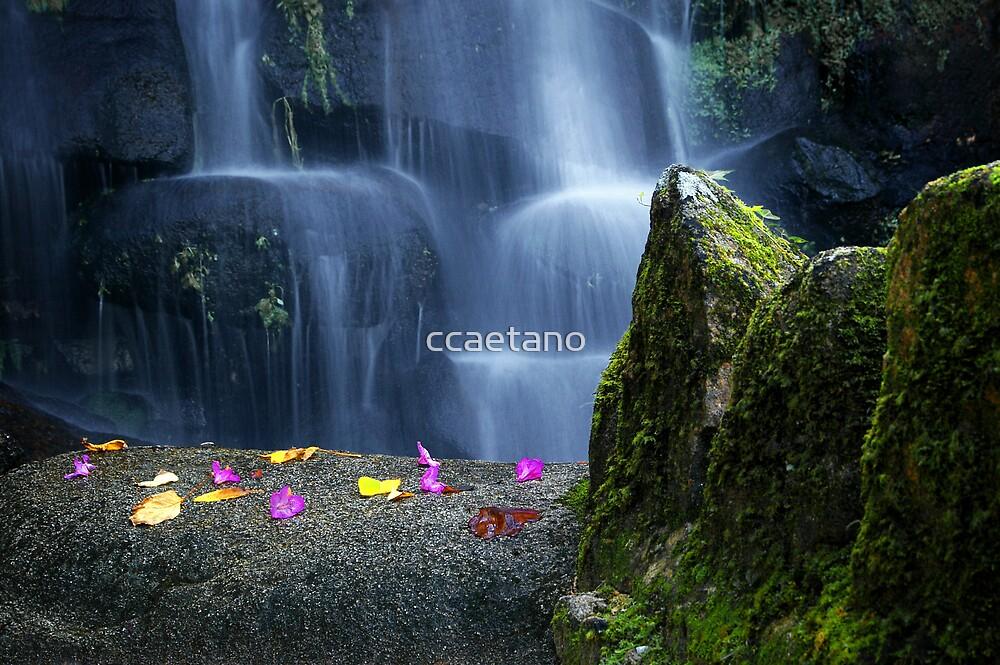 Waterfall in Moserrate by ccaetano