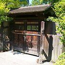Doorway to Paradise by WaleskaL