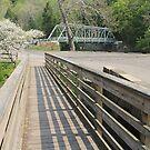 Beaver Creek Bridges by Jack Ryan
