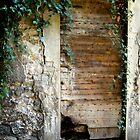 Doors and windows by KERES Jasminka