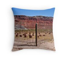 R.I.P. Paria, Utah Throw Pillow