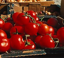 Tomatoes by Rachel Broten
