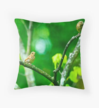 We See You Throw Pillow