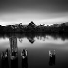 Huon Valley by Alex Wise