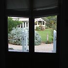 Window View by ScenerybyDesign