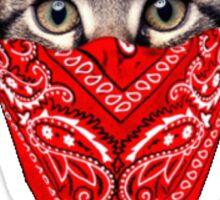 The OG Cat Sticker