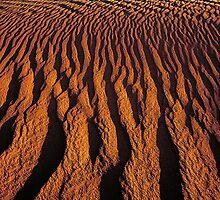 'Tribal Dunes' by DLUhlinger