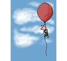 Piglet in the Clouds Photographic Print