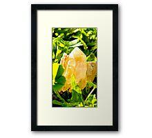 Raw quartz Framed Print