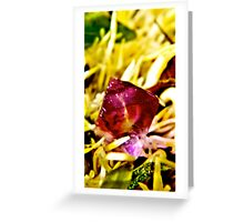 Diamond  Purple Fluoride cleansing in the sun  Greeting Card