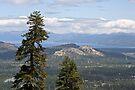 """Lake Tahoe Basin"" by Lynn Bawden"