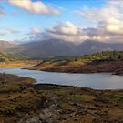 Arthur lake panorama:: Bigger and Wide screen (full view) by Tridib Ghosh