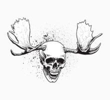 Cranius Alces Sapien