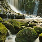 Falls And Flows by Michael Walters