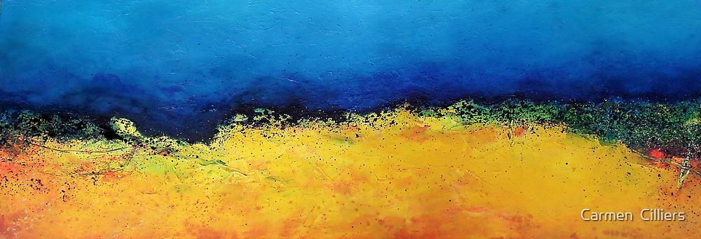 Veldstorm by Carmen  Cilliers
