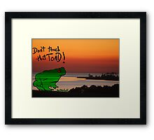 The Frog goes 2island Framed Print