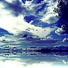 SKY SCAPE    by Rick  Todaro
