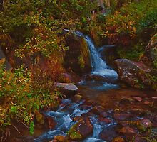 Waterfall in Himalayas by Anna Alferova