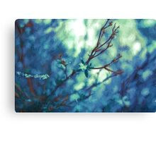 Painted Spring Blossom Canvas Print