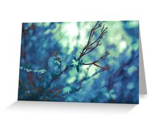 Painted Spring Blossom Greeting Card