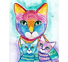 Rainbow Mom Cat and Kittens Photographic Print