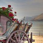 Argostoli Cart by Paul Thompson Photography