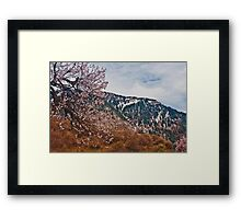 Spring in Himalayas II Framed Print