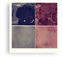 four in one - another one Canvas Print