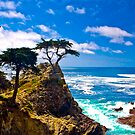 Monterey Lone Cypress by photosbyflood