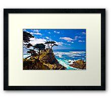 Monterey Lone Cypress Framed Print
