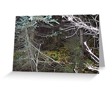 Creepy Eyes in the Trees Greeting Card