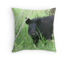 They call me Mr. Rooter Throw Pillow