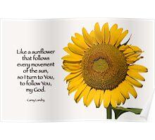 Like a sunflower . . . Poster