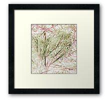 Lawn Morph Framed Print