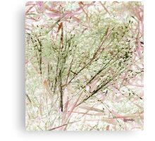 Lawn Morph Canvas Print