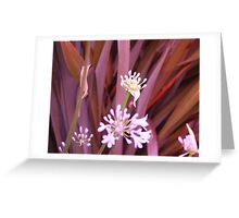 Frond Rainbow: Greeting Card