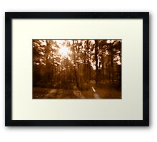 Spooky forest 2 Framed Print