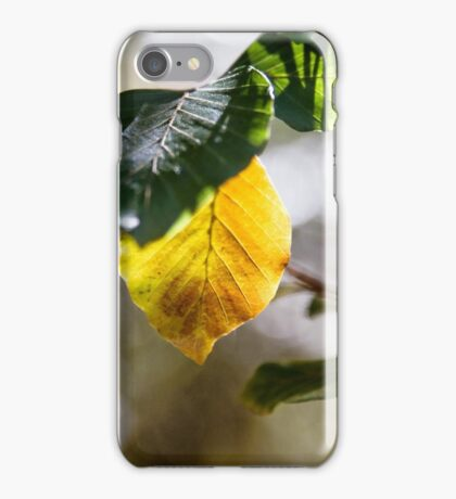 Turning Colours iPhone Case/Skin