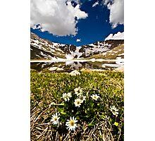 Peaceful Simplicity Photographic Print