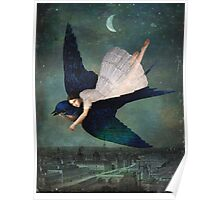 fly me to paris Poster