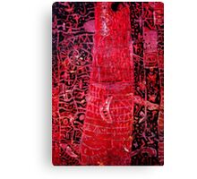 Illude 6 Canvas Print