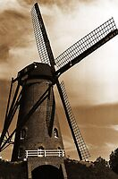 ~Windmill~ by Terri~Lynn Bealle