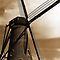 Windmills From Around The World