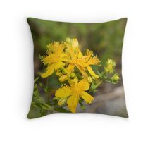 Common St. John's-Wort (Hypericum perforatum) Throw Pillow