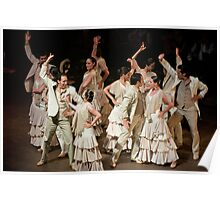 Flamenco Dance Troupe Poster