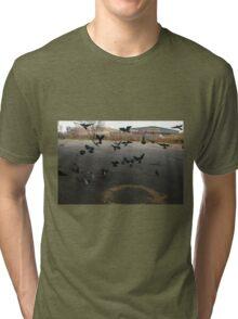 Pigeons Flight in Montreal Suburb. Tri-blend T-Shirt
