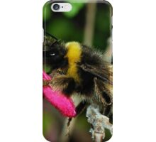 Random Bumble Bee